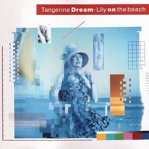 Tangerine Dream Lily on the Beach