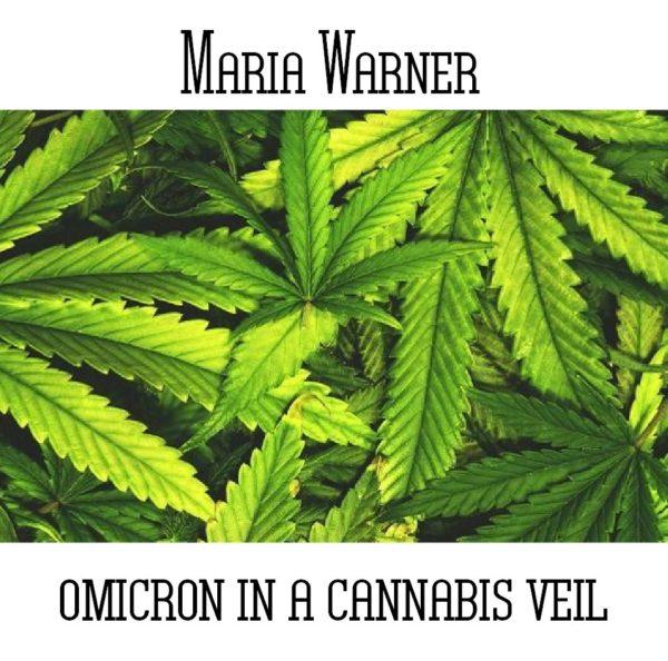 Maria Warner - Omicron In A Cannabis Veil - Web
