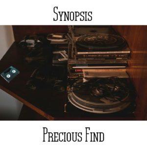 Synopsis - Precious Find - Web